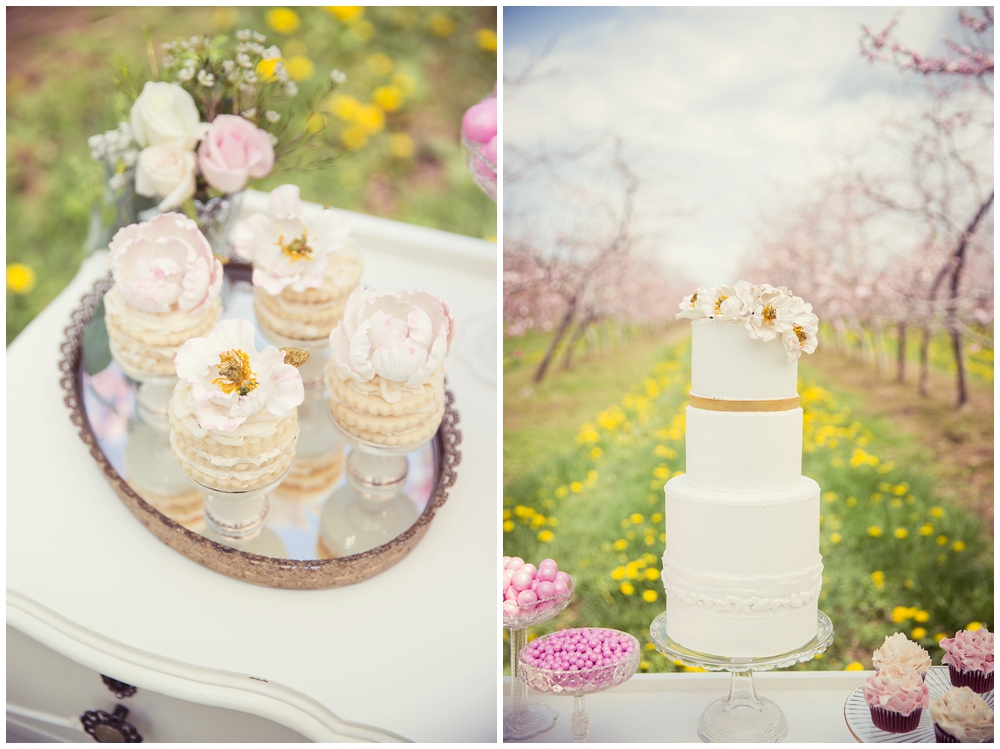 Simply Lace Photography Wedding Stylized Session Bloom_0006